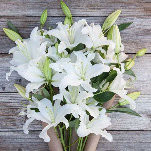 Spotlight Bouquet | Bouqs