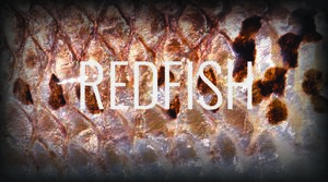 redfish.jpeg