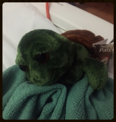 When my brother had surgery last year, my dad brought a stuffed Ninja Turtle to the hospital as a good luck charm because my brother loved the TMNT as a kid. When it was my dad's turn to go under the knife, my brother got him this little guy. Excuse me while I go sob.