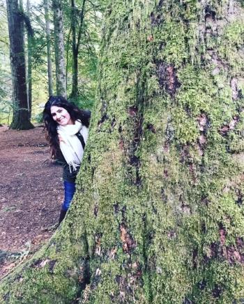 Scotland-Dunkeld-Forest.JPG