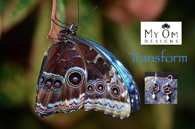 butterfly-611169_640.jpg
