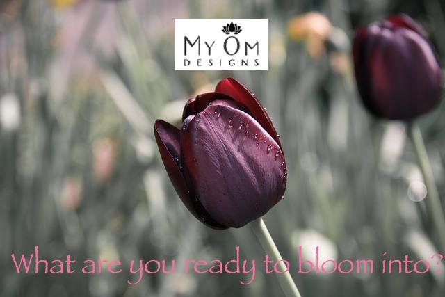 tulip-670643_640.jpg