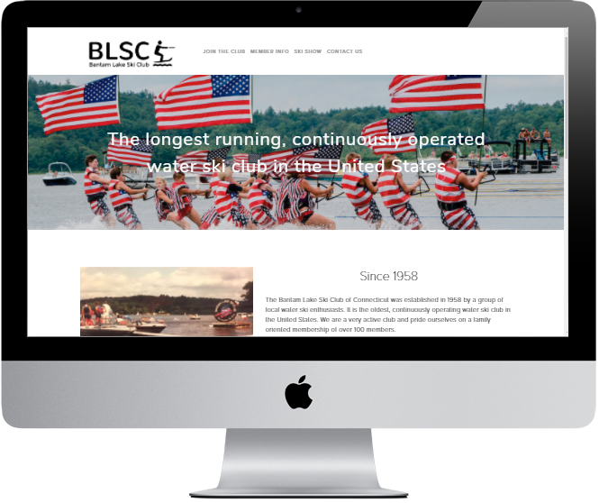 blsc website.PNG
