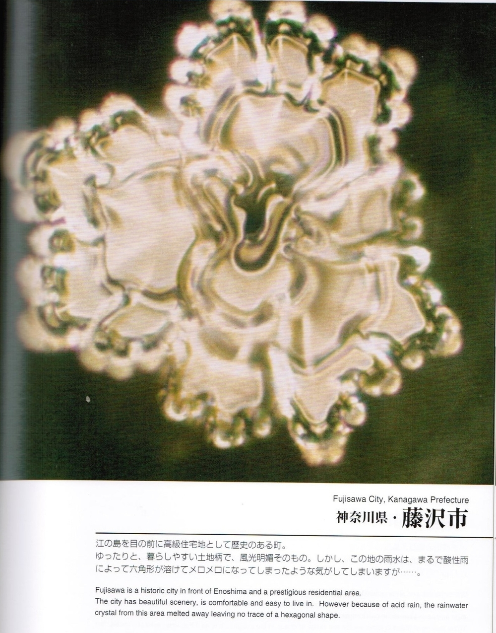 dr emoto crystals city fujisawa rain water 001.jpg