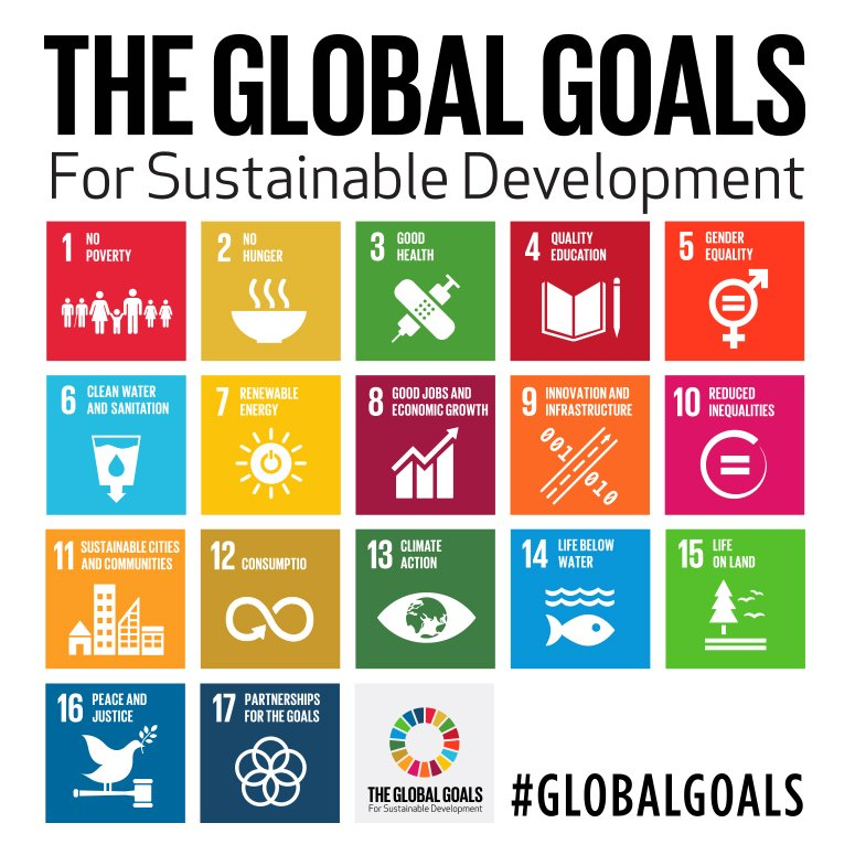 UN Global Goals The Wilcocks Brothers