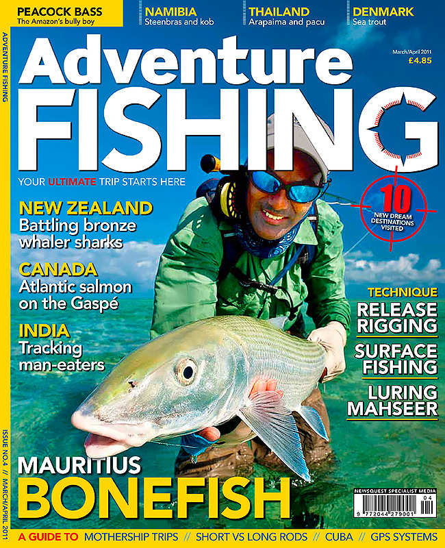 AF-Issue-4---JPEG.jpg