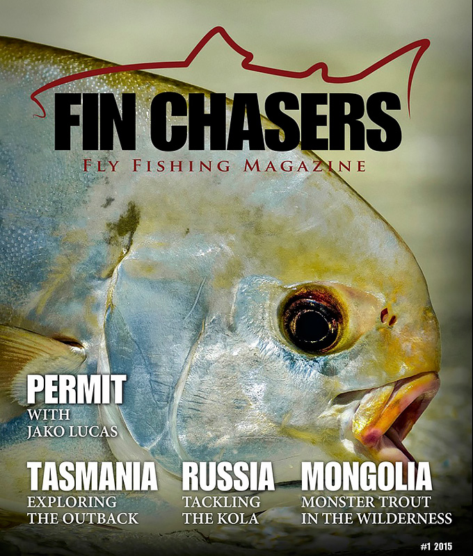 Fin-Chasers---no.1,-2015.jpg