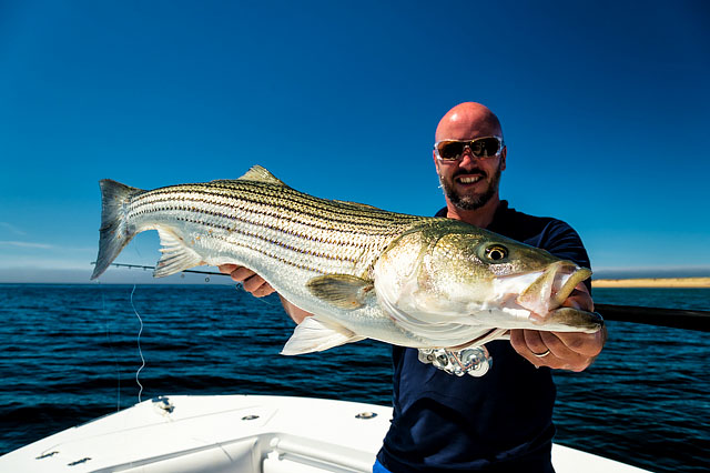 hook up fishing charters cape cod