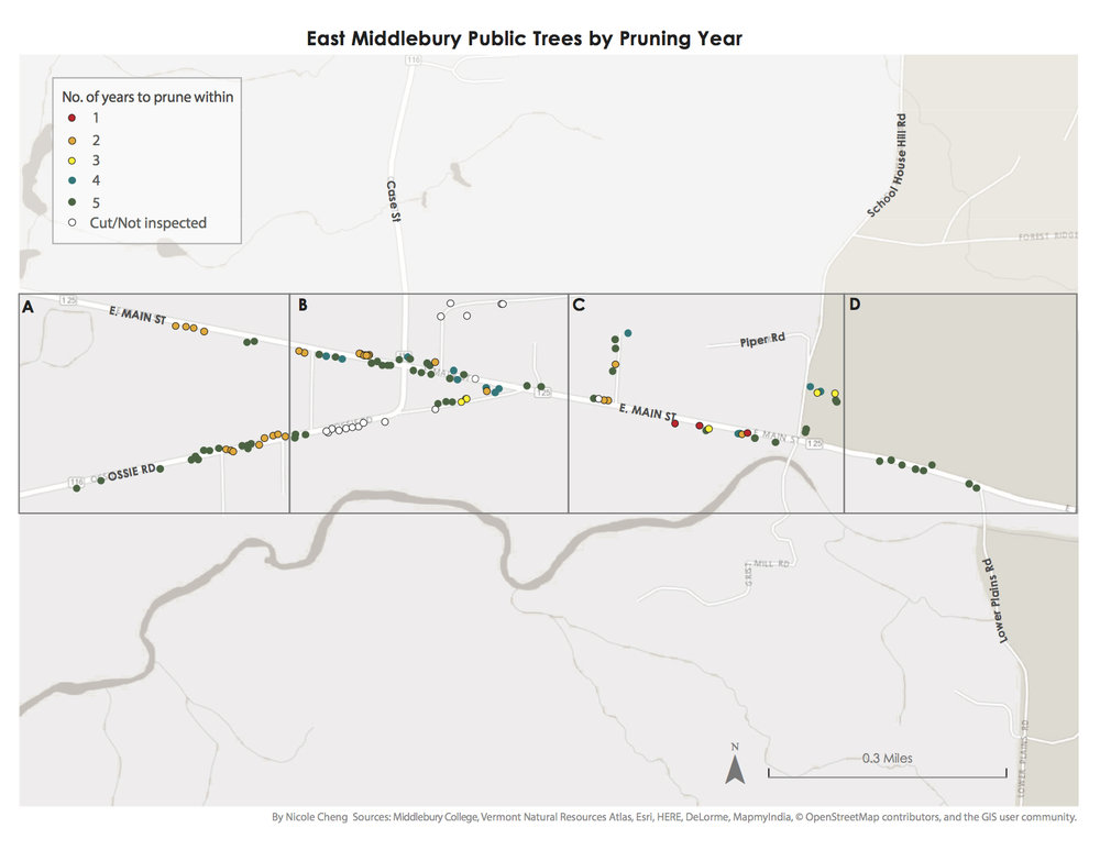 Maps made for Middlebury Tree Warden as part of the Middlebury Community Forestry Action Plan