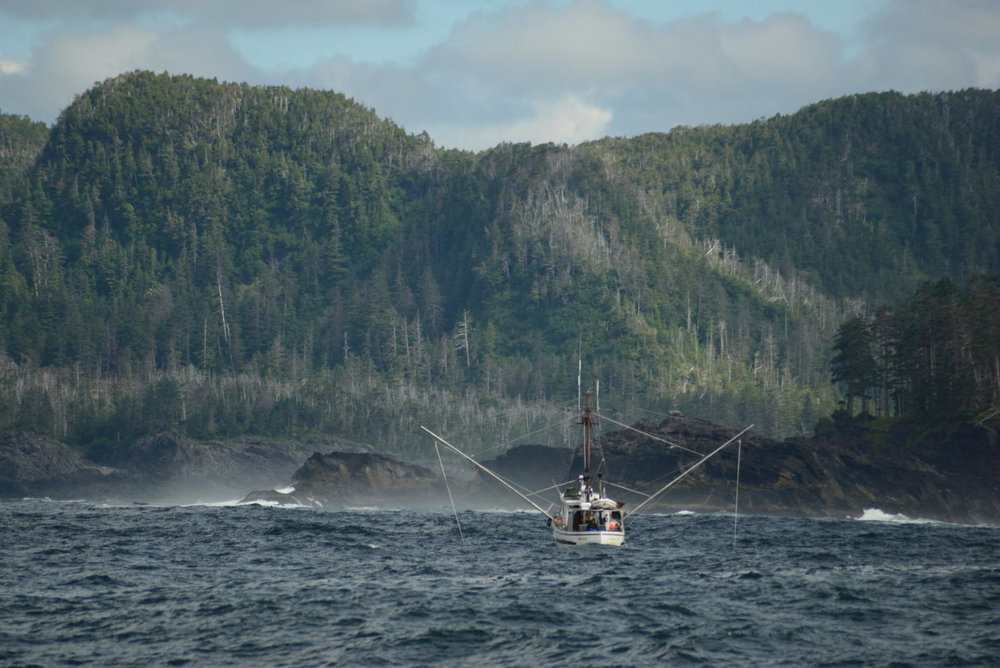 Photograph by Berett Wilber. More about fishing with her dad in the Sitka Sound can be found here.