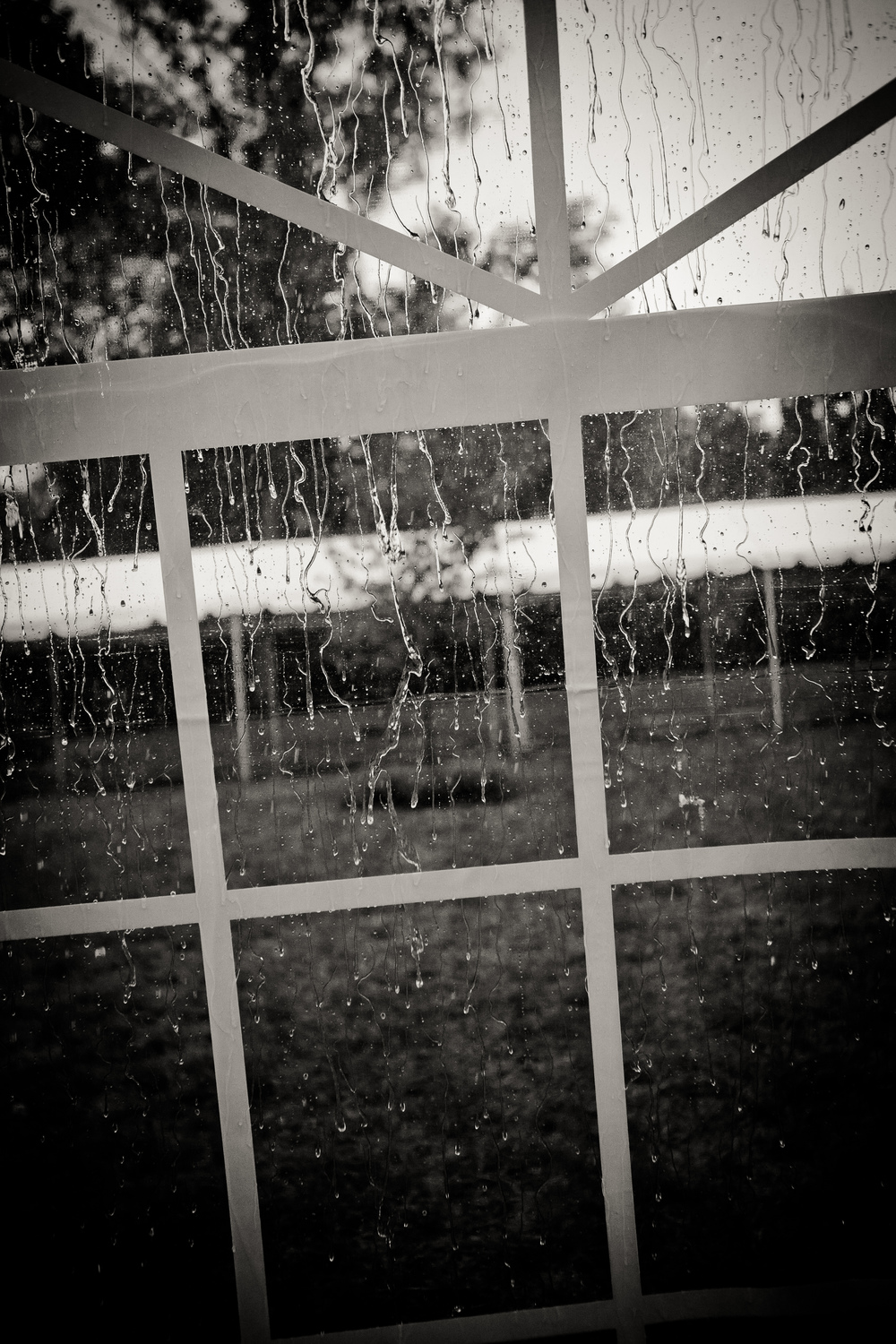 Rain on the window pane.