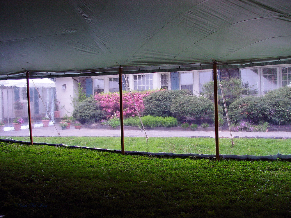 White tent with clear sidewall