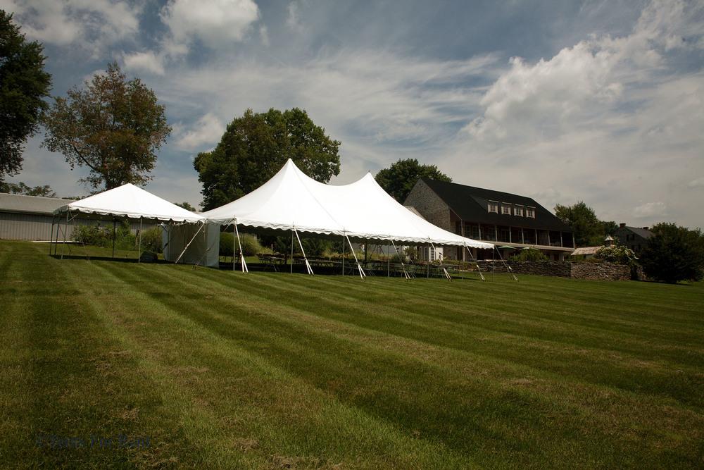 40x60 white tent