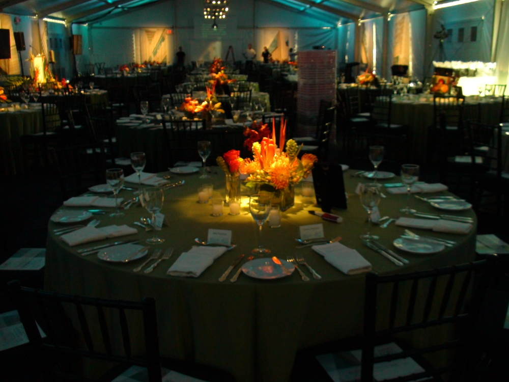 Party Rentals in Lancaster