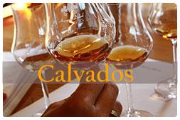 Calvados   provning, Ciderprovning stockholm