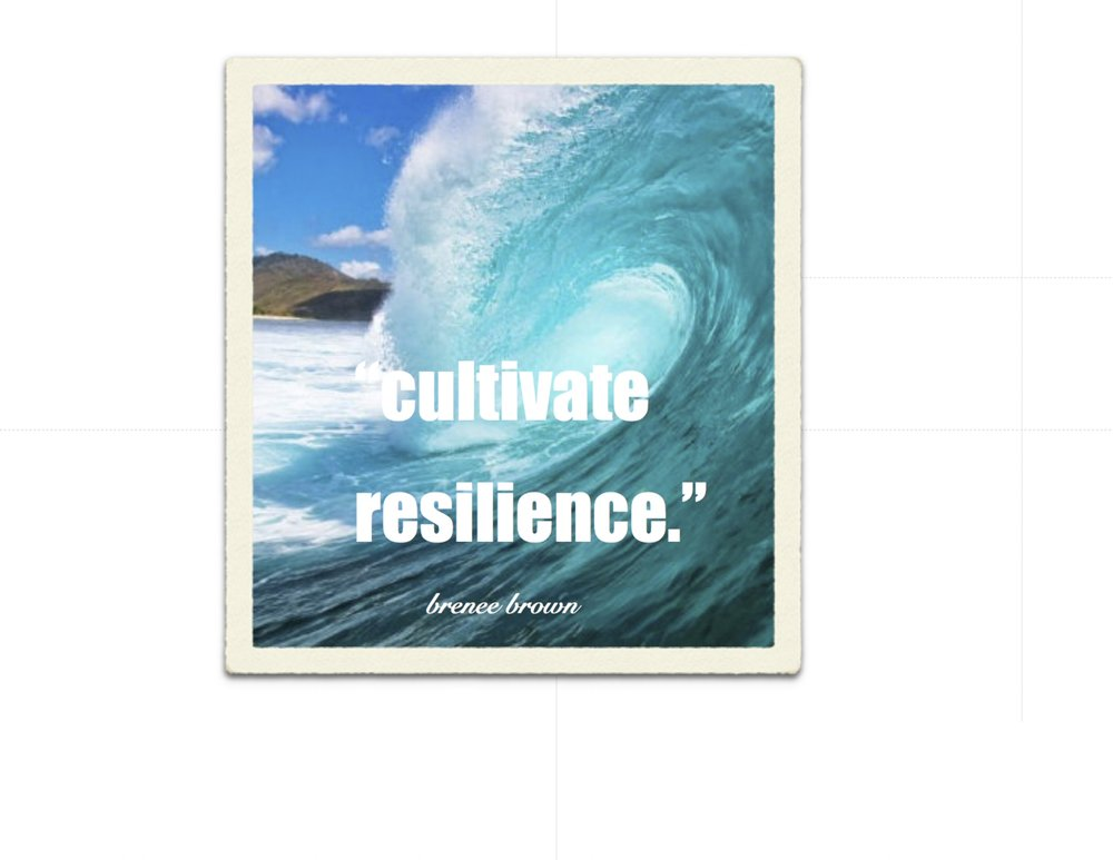 cultivate resilience.jpg