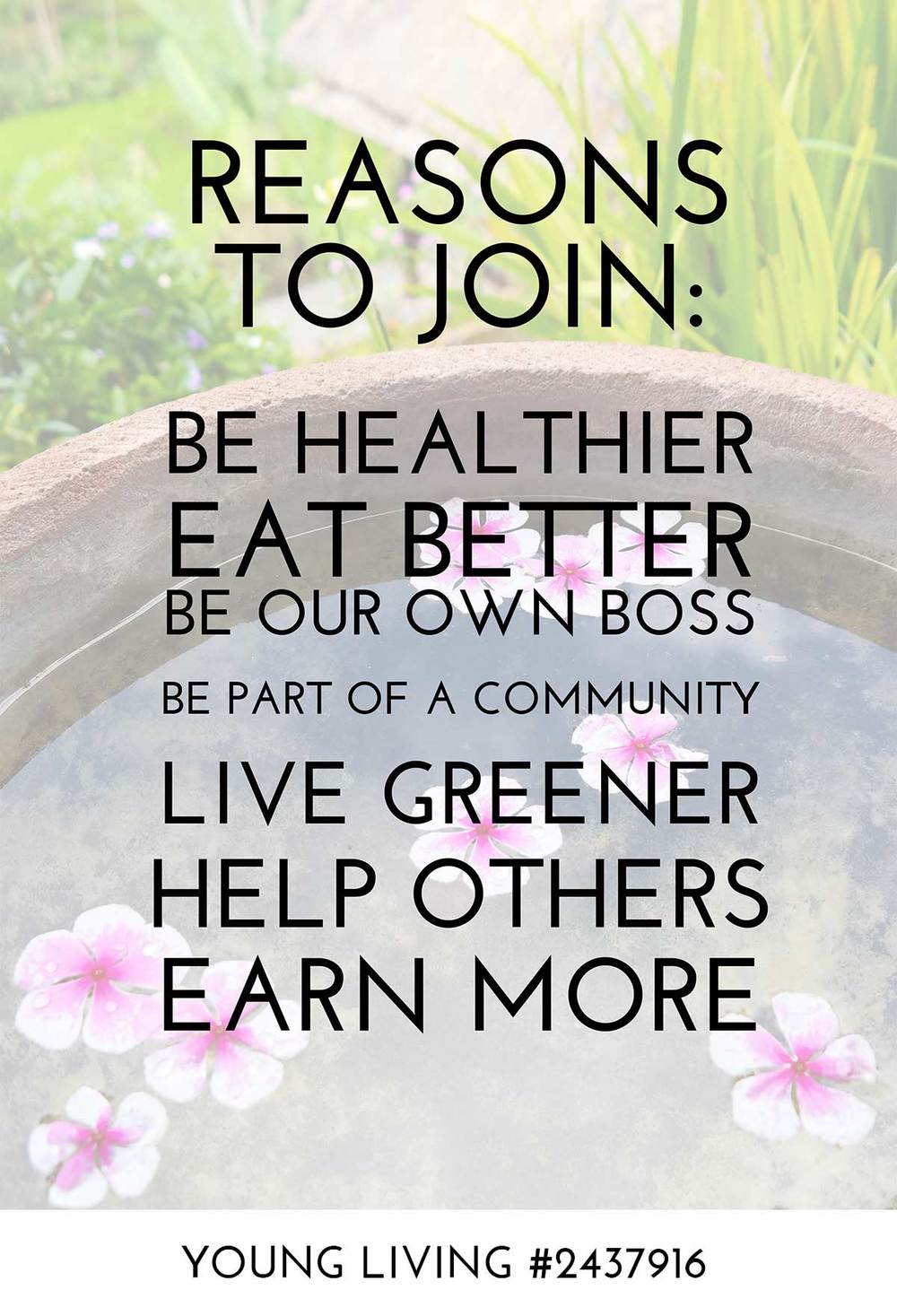 Wholesale membership enjoy life oils my only regret with young living is why didnt i join sooner colourmoves