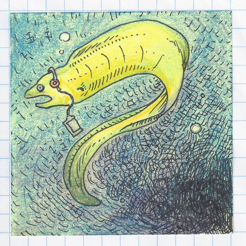 green moray eel really into pavement IN COLOR 1.jpg