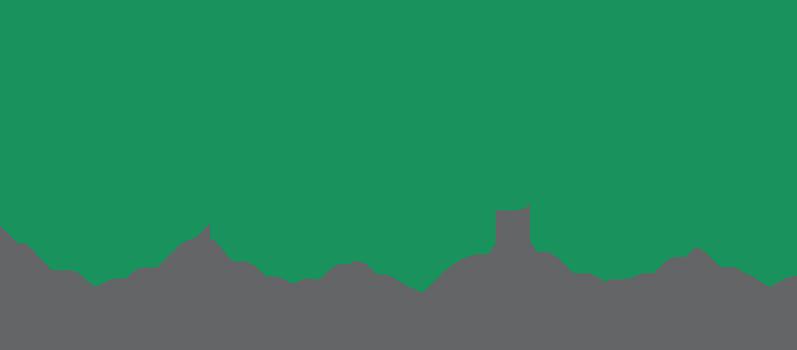 VIPA_Logo_2013.png