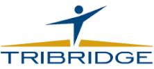 www.tribridge.com