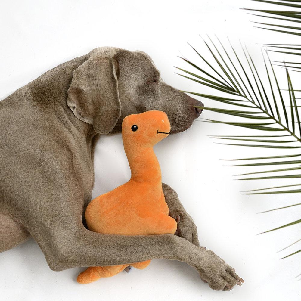 dog toy dino