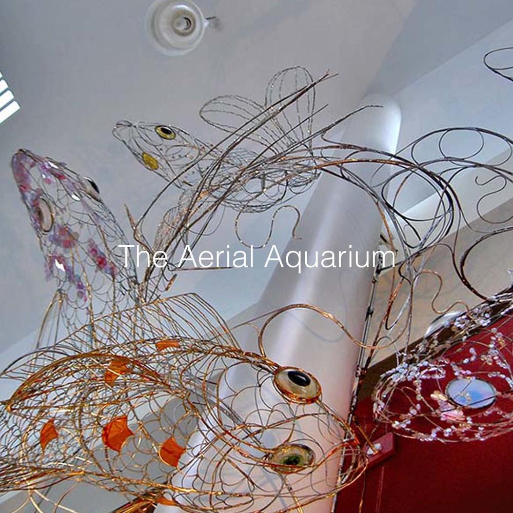 Aerial Aquarium Sq.jpg