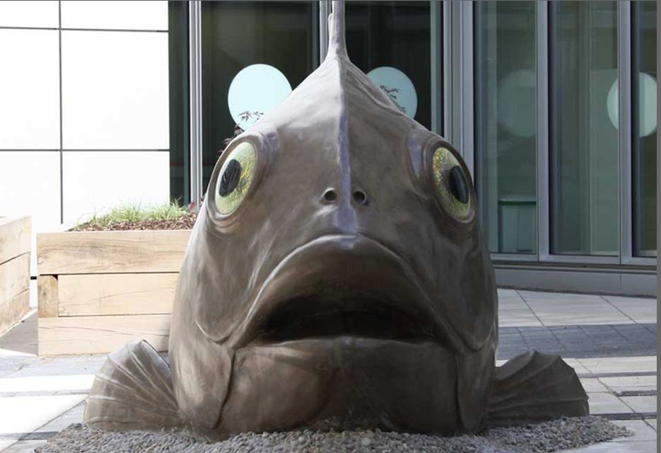 BIG FISH 2.jpg