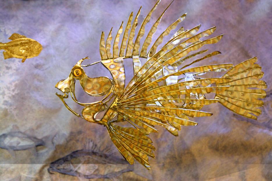 Lion fish Aquarium.jpg