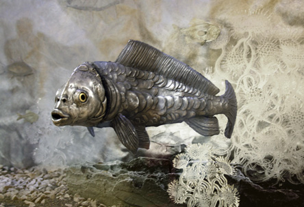 Silver aquarium fish.jpg