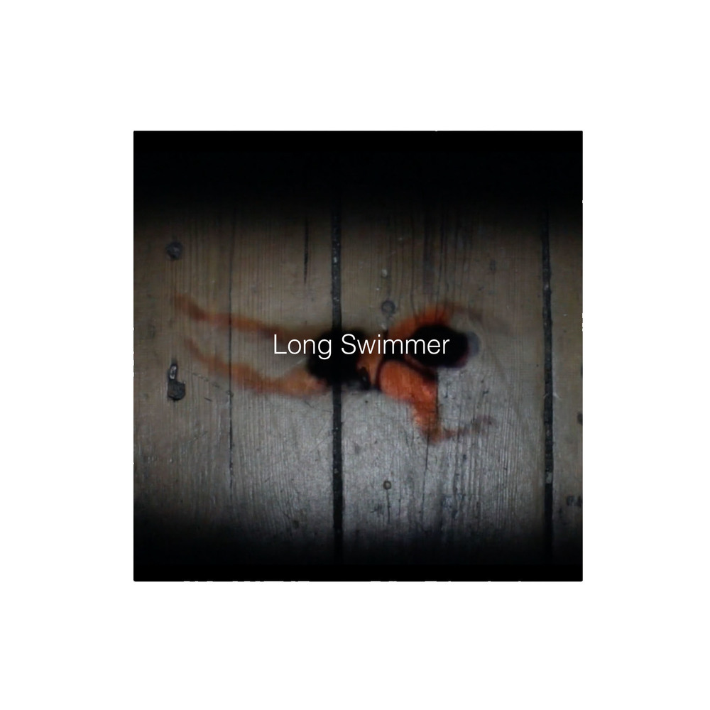 Long Swimmer Small Sq.jpg