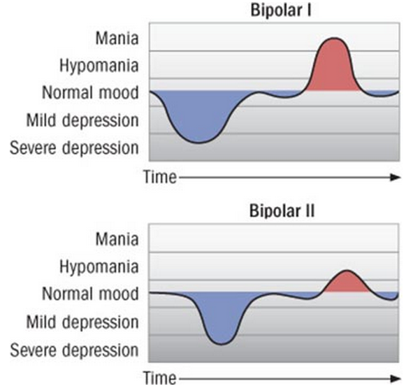 signs of adult bipolar