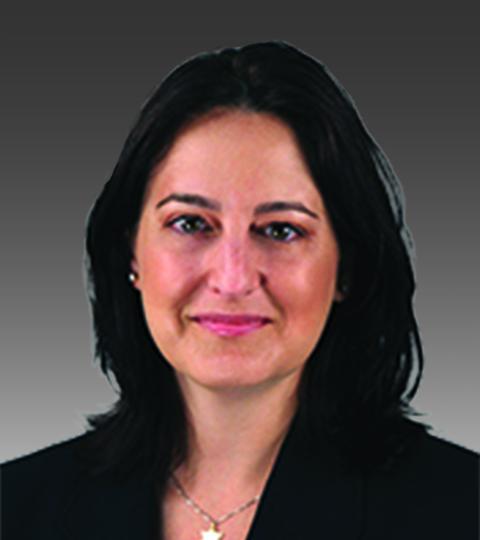 Karen Firstenberg   Litigation