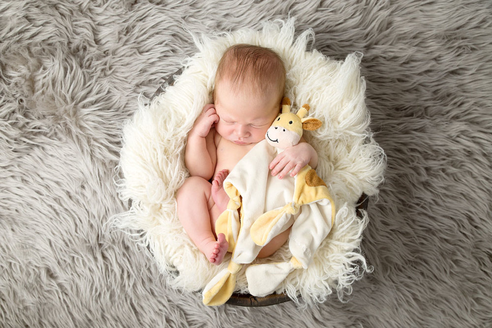 Newborn baby photography St Albans