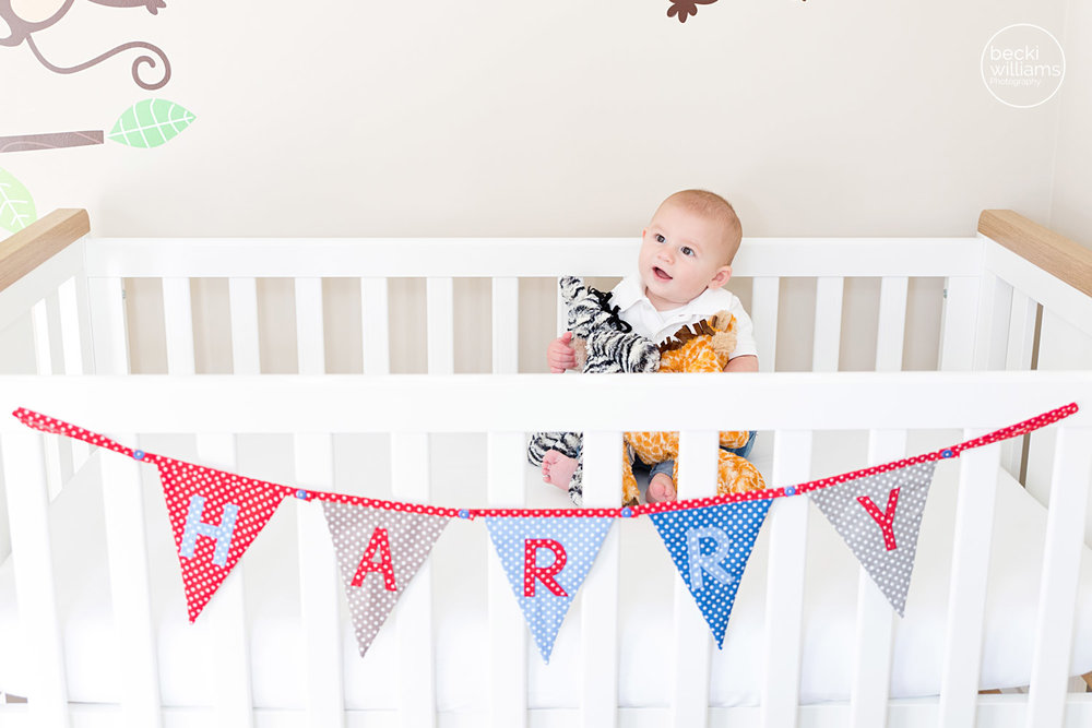 Baby pictures-8 month old-Harry-Cot-Bunting