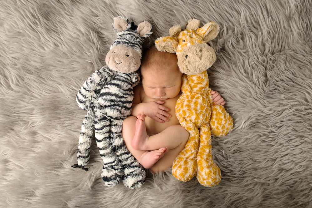 Baby pictures - 8 month old Harry as a newborn with his teddies