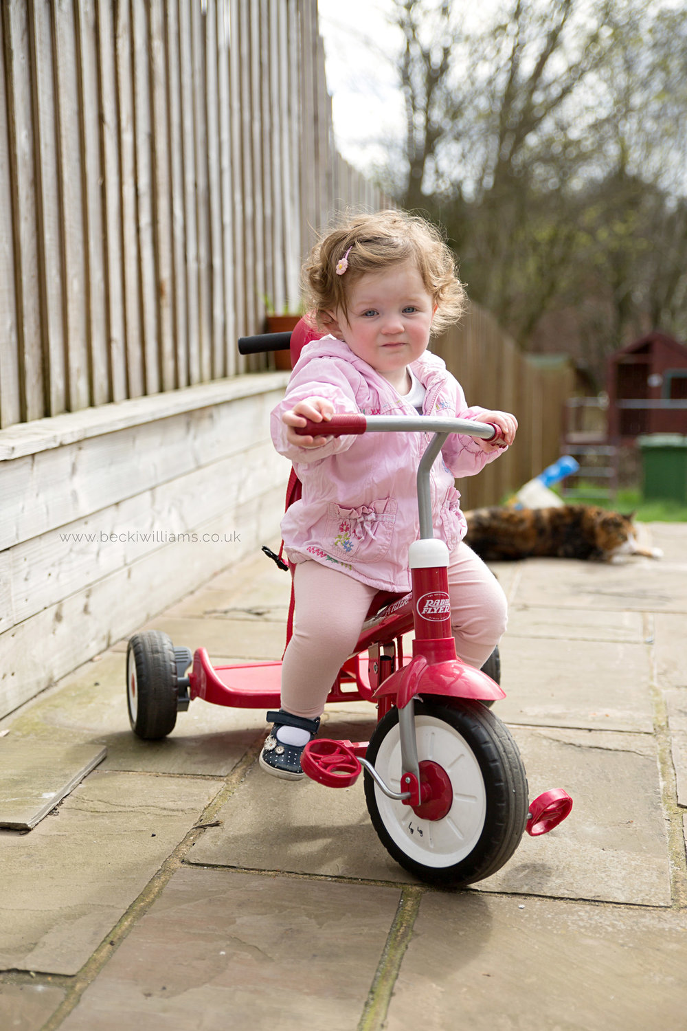 1 year old rides red trike during photo shoot