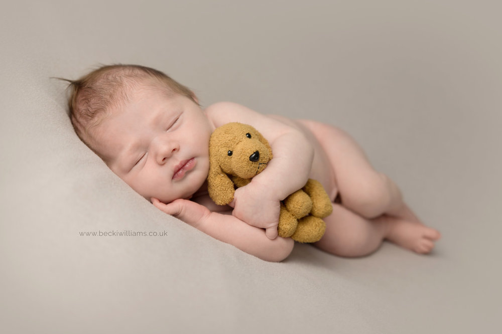 professional photo shoot of newborn baby in hemel hempstead.  newborn lays on his side hugging a cuddly dog.