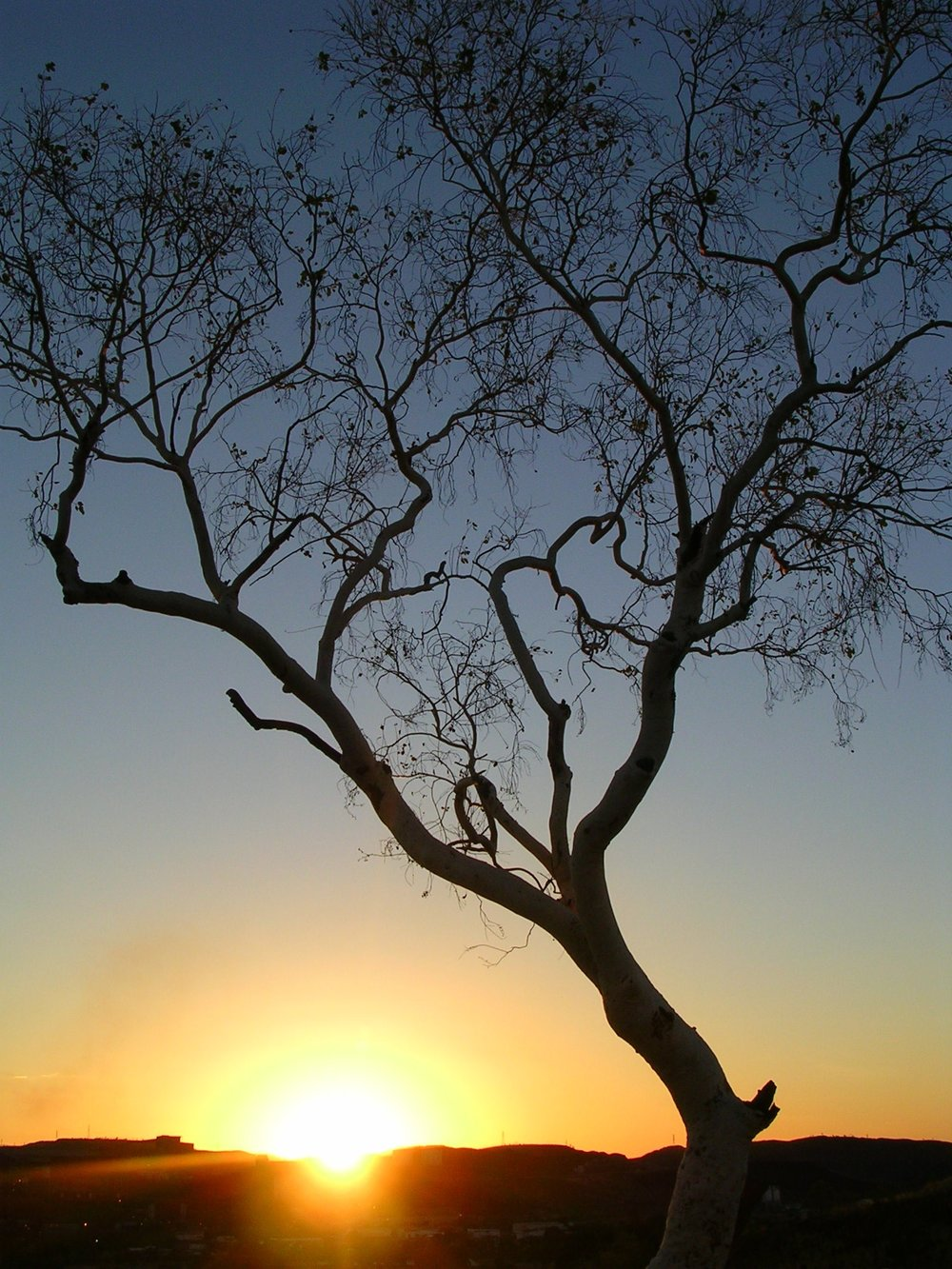 sun_set_at_mt__isa_by_putrescent_pen.jpg