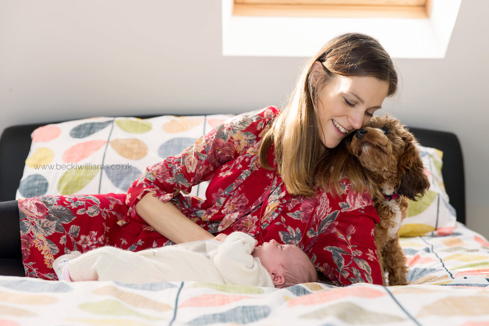 new mum lays on a bed with her newborn baby girl.  their dog looks loving at the mum.