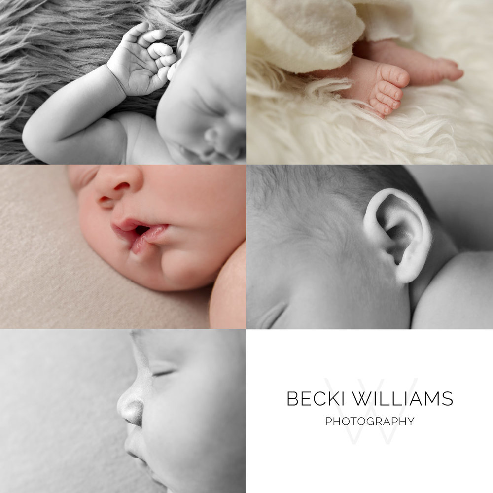 close up of hand, toes, lips, ear and nose from a newborn baby photo shoot in hemel hempstead