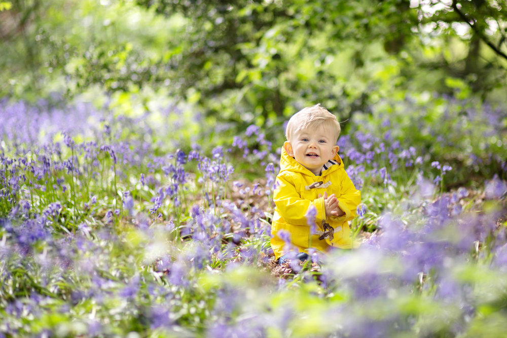 little boy wearing a yellow coat, sitting in bluebells in st albans