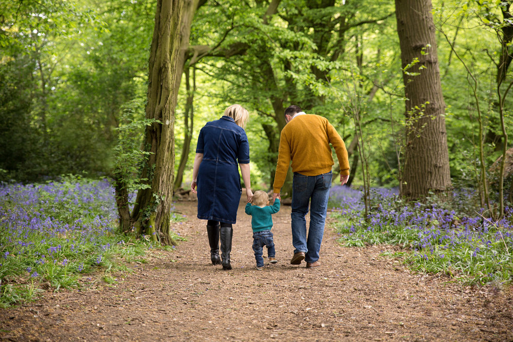 family walking down a down surrounded by bluebells in st albans