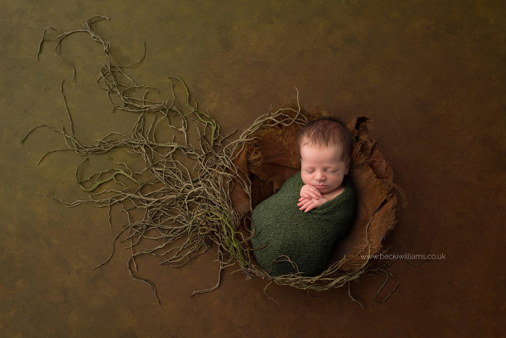newborn boy lays asleep in a brown earthy bowl with roots growing from it for his newborn photo shoot in hemel hempstead