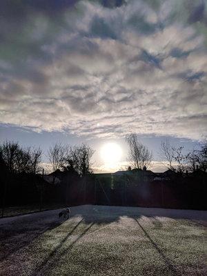 newborn-photography-hemel-hempstead-sun-rise-tennis-courts.jpg