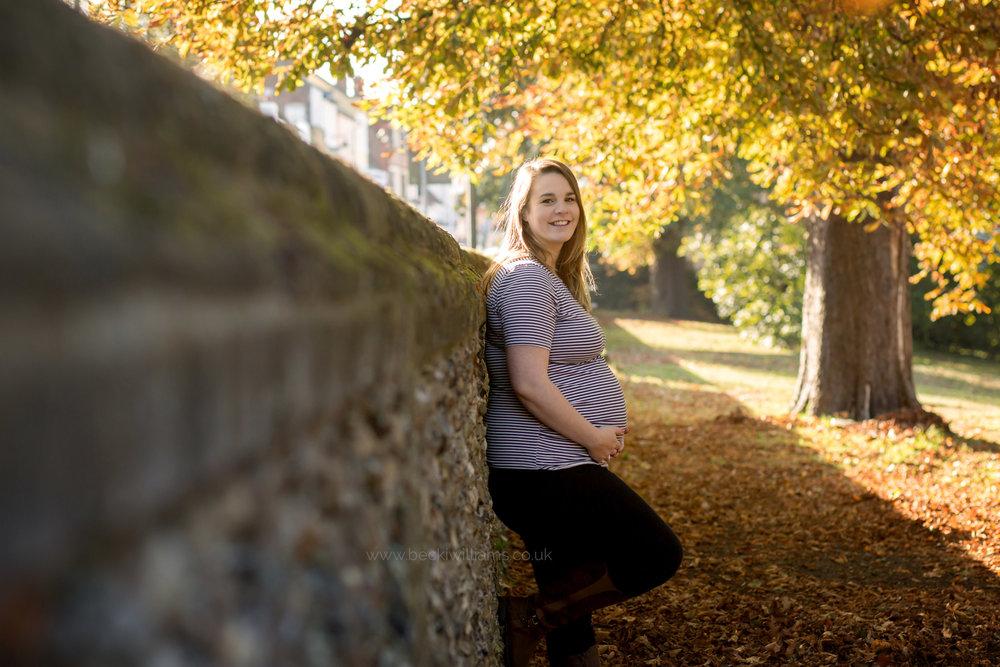 maternity-photography-in-Herfordshire-Gadebridge-Park-pregnancy-4.jpg