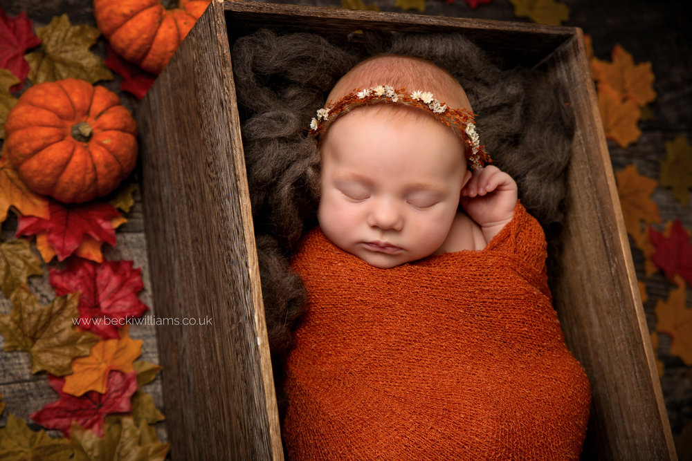 newborn baby girl lays wrapped in orange in a crate surrounded by autumnal leaves for her newborn photo shoot in hertfordshire