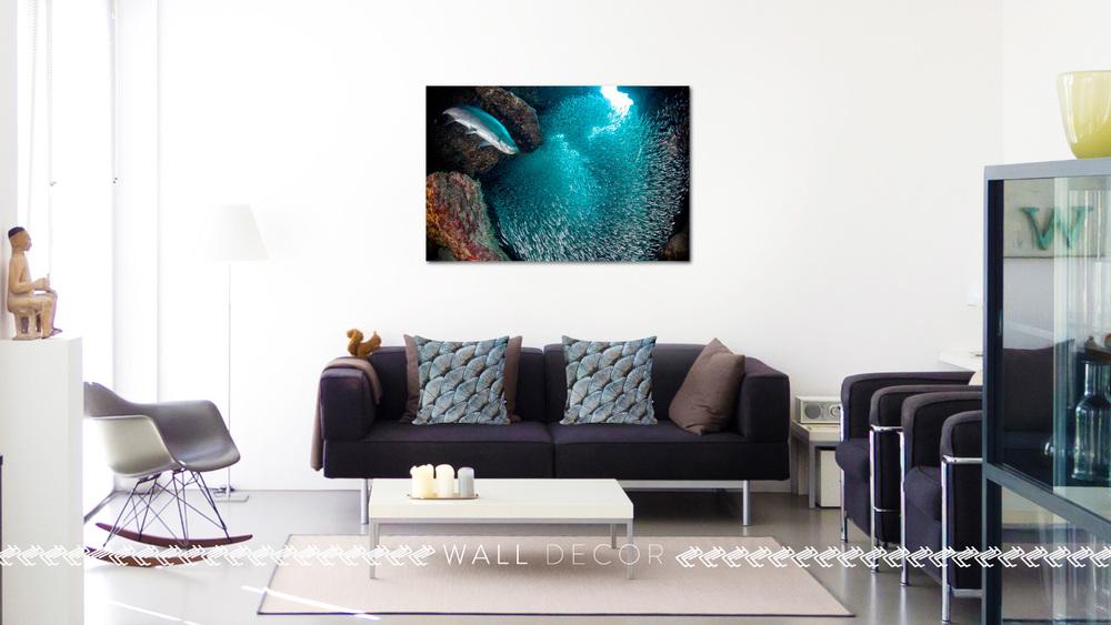 sala-fish-home.jpg