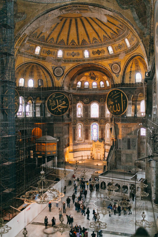 turkey141.jpg