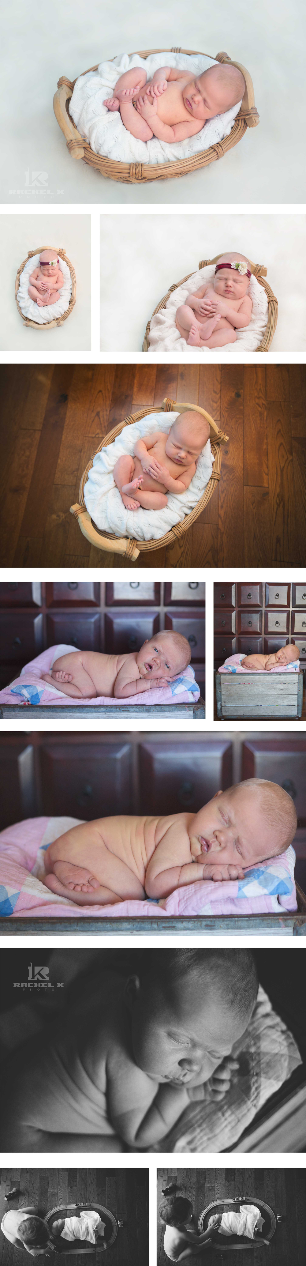 Newborn photography Knoxville TN