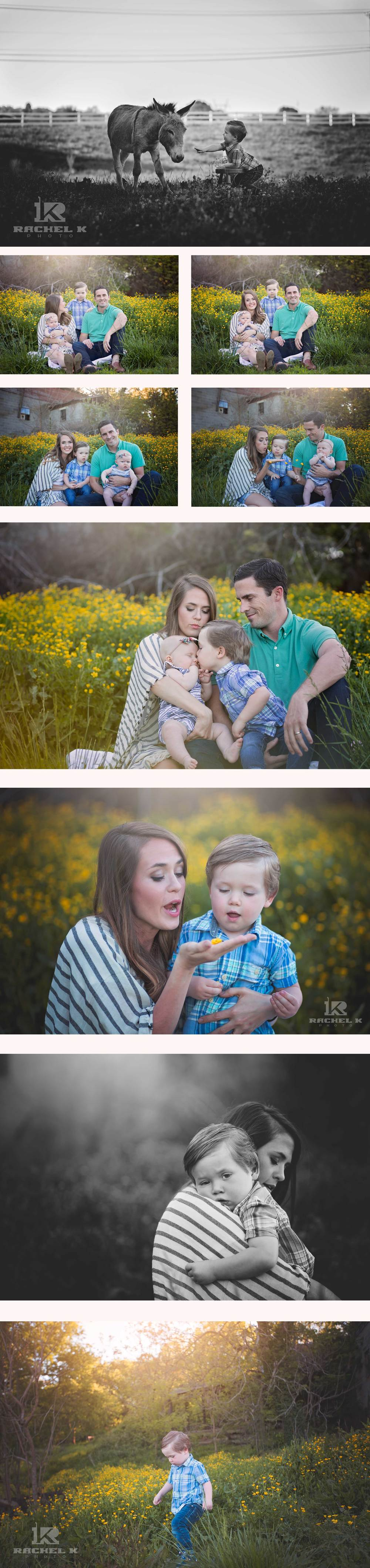 Arlington county family photos by Rachel K Photo